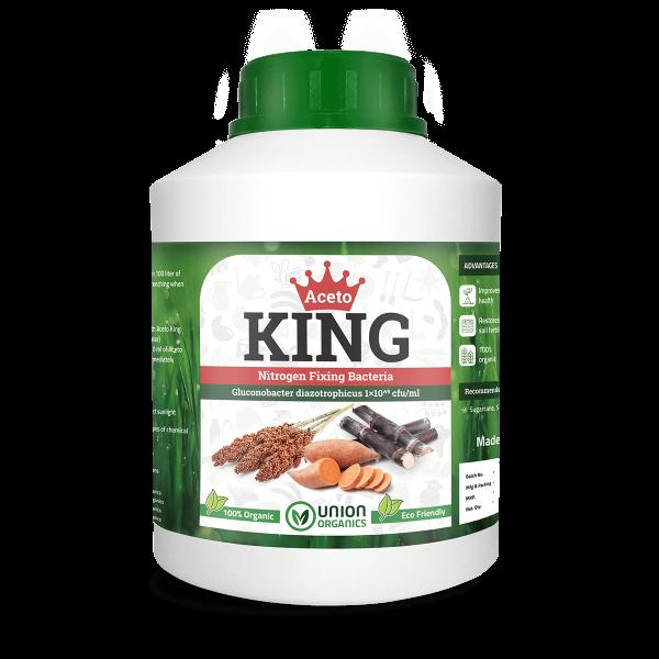 Aceto king - Nitrogen Fixing Bacteria